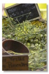 Olivesfenouilles1